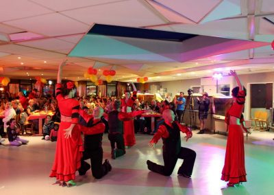 Skydance-show 2015